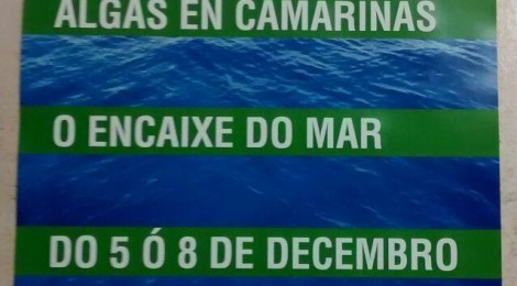 jornadas algas marinas camariñas